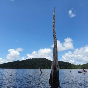 Barrage Petit Saut Guyane