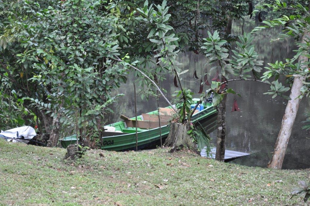 Inselberg Mataroni Guyane